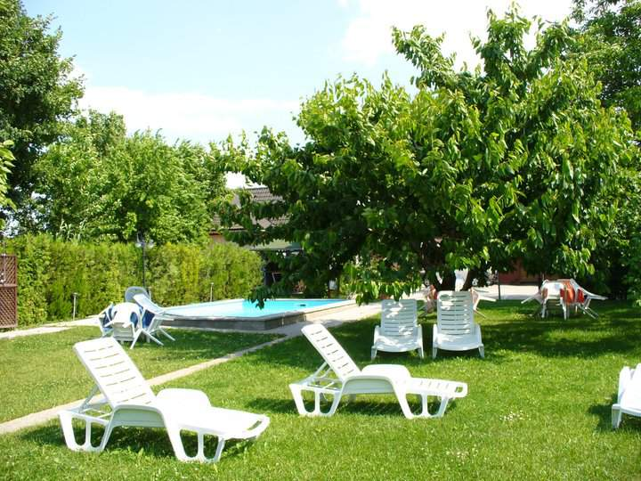 Swimming pool in the garden, and the sunbed usage in Guesthouse Németh